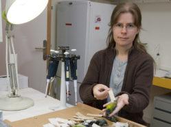 alice with bird specimens
