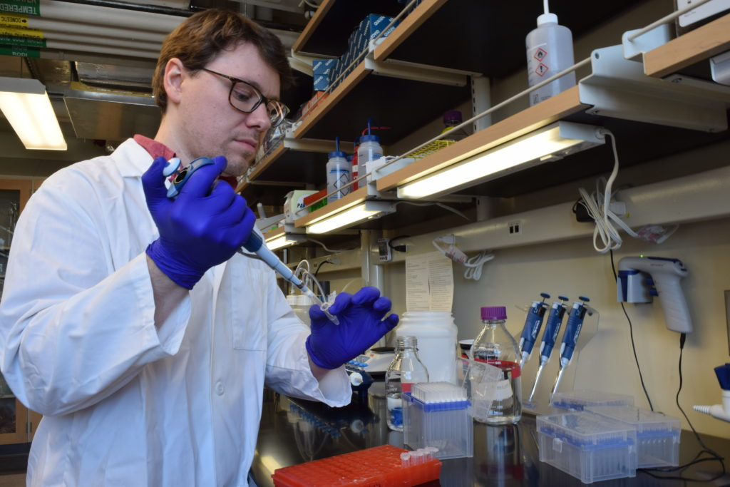 An early-career member of AOS at work in the lab.