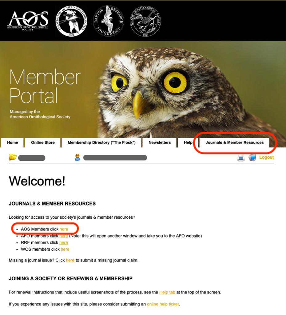 journal access screenshot