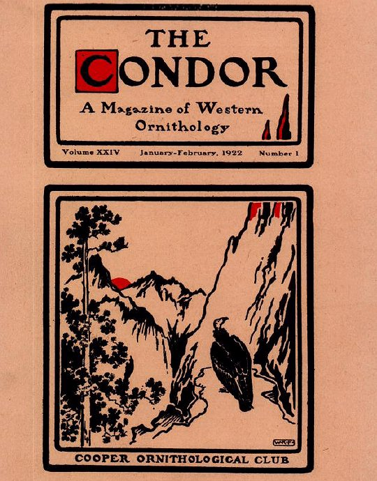 The Condor journal cover 1922