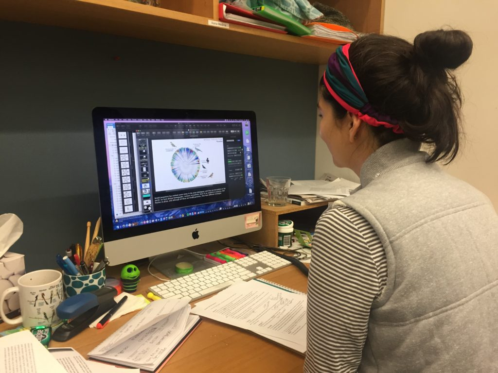 researcher working at a computer