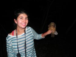researcher holding a small owl