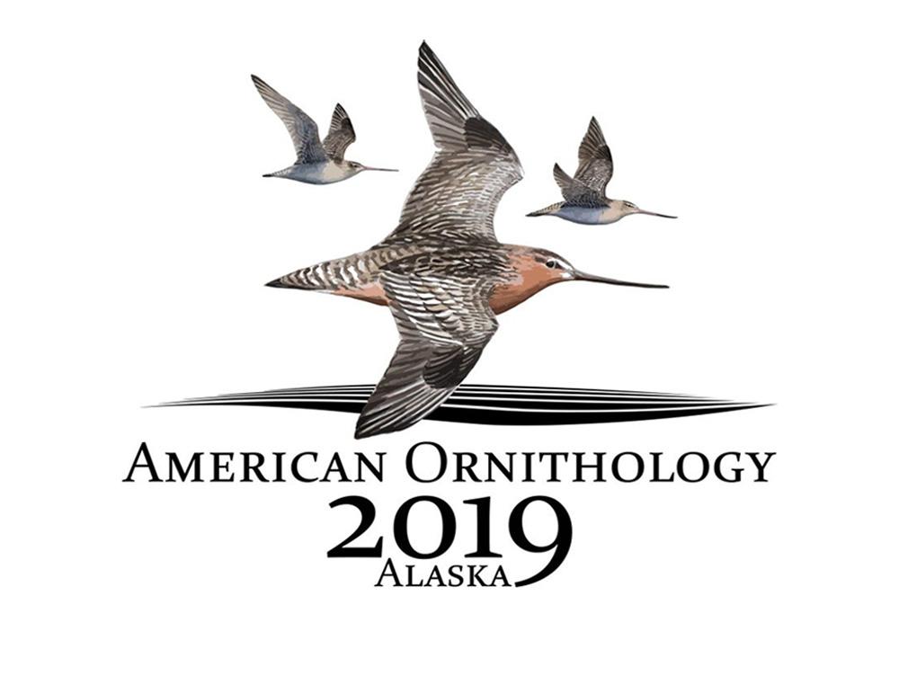 AOS 137th Stated Meeting logo