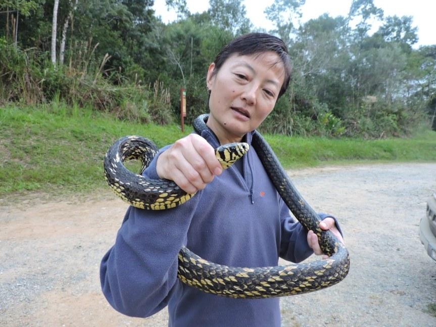 dr. miyaki holding a snake