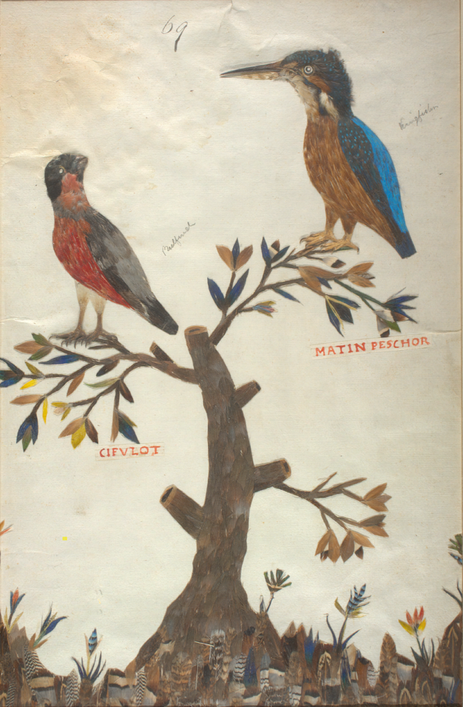 painting of two birds perched in a tree, showing texture and detail in their feathers.