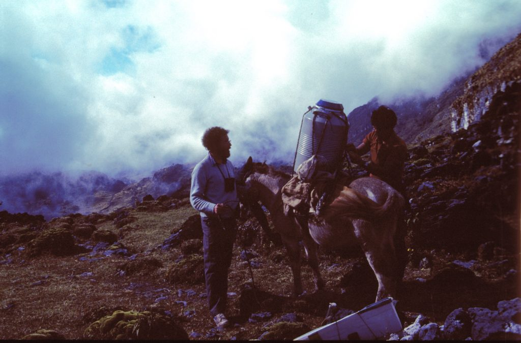 photo of a mule in a cloudy mountain setting with a large metal canister strapped to its back