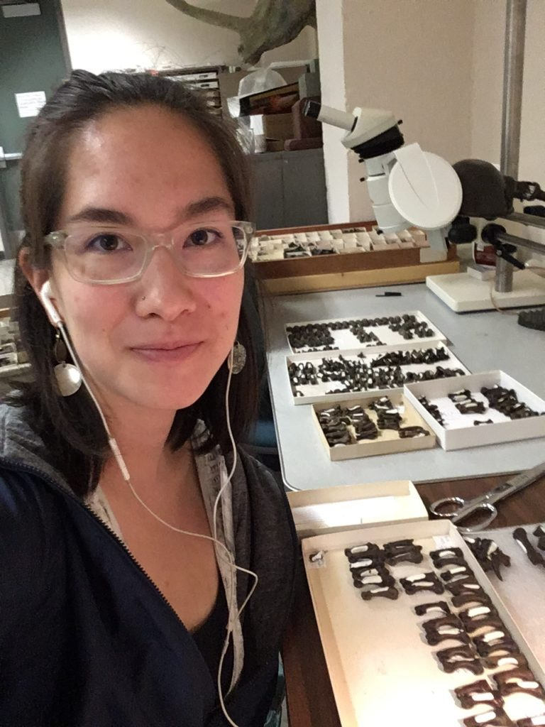 a young woman with glasses seated in front of trays of small fossils