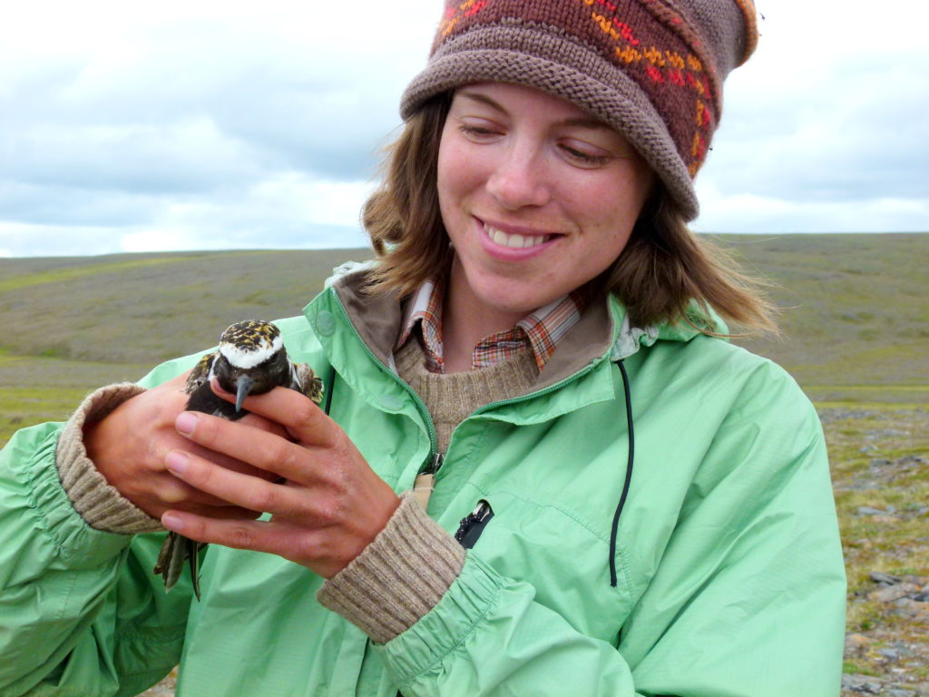 a young woman holding a plover in a tundra environment