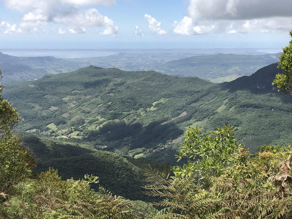 a photo of the Atlantic Rainforest Photo by Alex E. Jahn